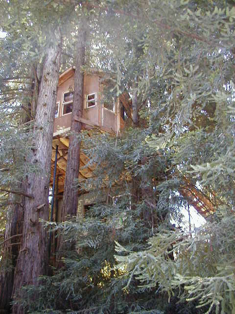 Picture of Corbin\'s Treehouse